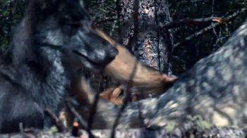 Blue Buffalo BLUE Wilderness TV Spot, 'Wolf Pack' - Thumbnail 8