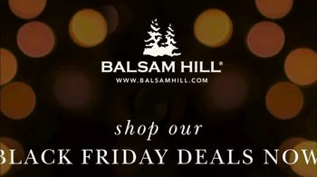 Balsam Hill Black Friday Deals TV Spot, 'Home for the Holidays' - Thumbnail 10