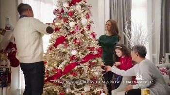 Balsam Hill Black Friday Deals TV Spot, 'Home for the Holidays'