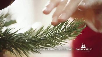 Balsam Hill Black Friday Deals TV Spot, 'Home for the Holidays' - Thumbnail 4