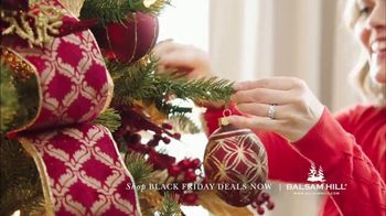 Balsam Hill Black Friday Deals TV Spot, 'Home for the Holidays' - Thumbnail 5