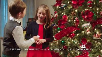 Balsam Hill Black Friday Deals TV Spot, 'Home for the Holidays' - Thumbnail 7