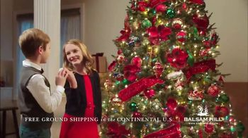 Balsam Hill Black Friday Deals TV Spot, 'Home for the Holidays' - Thumbnail 8