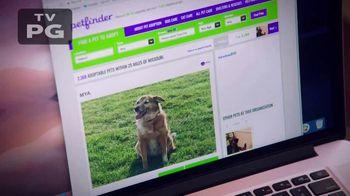 Purina TV Spot, 'National Dog Show' - Thumbnail 1