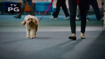 Purina TV Spot, 'National Dog Show'