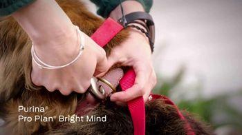 Purina TV Spot, 'National Dog Show' - Thumbnail 4