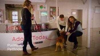 Purina TV Spot, 'National Dog Show' - Thumbnail 5