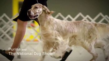 Purina TV Spot, \'National Dog Show\'