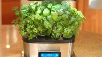 Miracle-Gro AeroGarden TV Spot, 'Plant to Plate' - Thumbnail 1