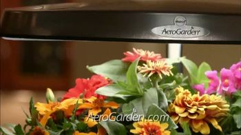 Miracle-Gro AeroGarden TV Spot, 'Plant to Plate' - Thumbnail 5