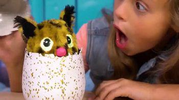 Hatchimals Golden Lynx TV Spot, 'Limited Edition'