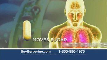 Take Control of Your Blood Sugar thumbnail