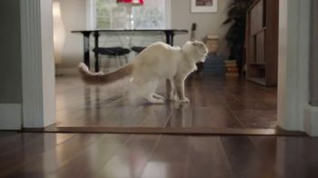 Swiffer TV Spot, 'Cat Hair Gets Everywhere' - Thumbnail 4