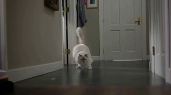 Swiffer TV Spot, 'Cat Hair Gets Everywhere' - Thumbnail 5