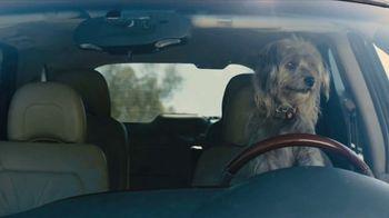 Farmers Insurance TV Spot, 'Chauffeur Terrier' Featuring Rickie Fowler