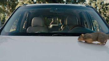 Farmers Insurance TV Spot, 'Chauffeur Terrier' Featuring Rickie Fowler - Thumbnail 3