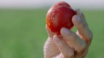 Hunt's Diced Tomatoes TV Spot, 'Vine to Can' - Thumbnail 1
