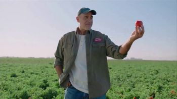 Hunt's Diced Tomatoes TV Spot, 'Vine to Can' - Thumbnail 2