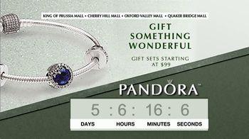 Pandora TV Spot, 'Timer: Perfect Holiday Gift' - Thumbnail 1