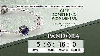Pandora TV Spot, 'Timer: Perfect Holiday Gift' - Thumbnail 7