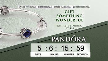 Pandora TV Spot, 'Timer: Perfect Holiday Gift' - Thumbnail 8