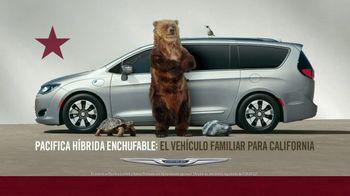 Chrysler Pacifica TV Spot, 'Pool' [Spanish] [T2] - Thumbnail 8