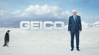 GEICO TV Spot, 'The Great Penguin Migration' - Thumbnail 10