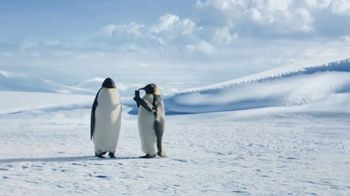 GEICO TV Spot, 'The Great Penguin Migration' - Thumbnail 6