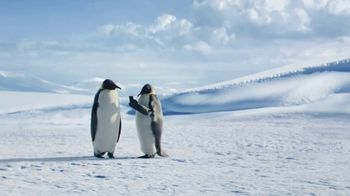 GEICO TV Spot, 'The Great Penguin Migration' - Thumbnail 7
