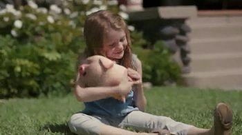 Santander Bank TV Spot, 'Piggy' - Thumbnail 9
