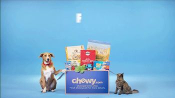 Chewy.com TV Spot, 'Get It Delivered' - Thumbnail 9