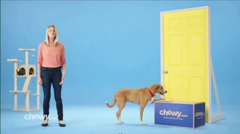 Chewy.com TV Spot, 'Get It Delivered' - Thumbnail 8