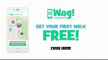 Wag! TV Spot, 'On-Demand Dog-Walking' Featuring Olivia Munn - Thumbnail 10