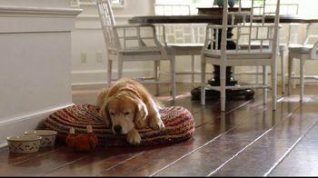 Wag! TV Spot, 'On-Demand Dog-Walking' Featuring Olivia Munn - Thumbnail 4