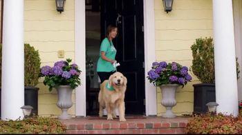 Wag! TV Spot, 'On-Demand Dog-Walking' Featuring Olivia Munn - Thumbnail 7