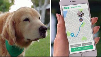 Wag! TV Spot, 'On-Demand Dog-Walking' Featuring Olivia Munn - Thumbnail 8