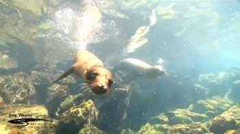 Jose Wejebe Spanish Fly Memorial Foundation TV Spot, 'Gift of Fishing' - Thumbnail 4