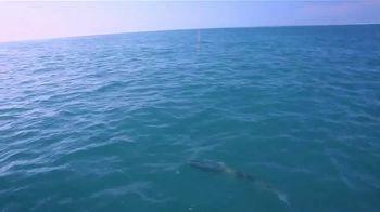 The Florida Keys & Key West TV Spot, 'Hide and Seek' - Thumbnail 8