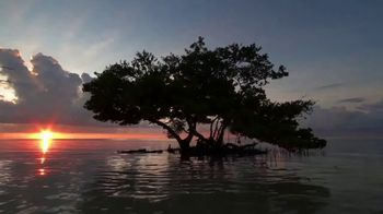 The Florida Keys & Key West TV Spot, 'Colors of Islamorada' - Thumbnail 2