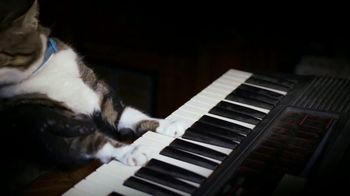 Amazon Fire TV TV Spot, 'Kitty Mozart' - Thumbnail 1