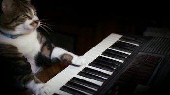 Amazon Fire TV TV Spot, 'Kitty Mozart' - Thumbnail 2
