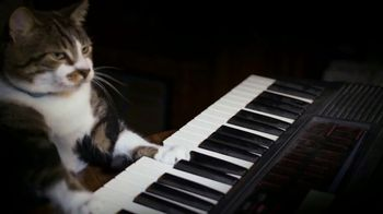 Amazon Fire TV TV Spot, 'Kitty Mozart' - 199 commercial airings