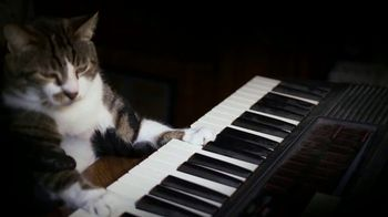 Amazon Fire TV TV Spot, 'Kitty Mozart' - Thumbnail 4