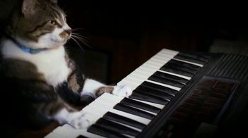 Amazon Fire TV TV Spot, 'Kitty Mozart' - Thumbnail 5