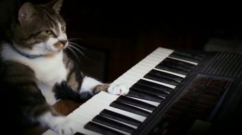 Amazon Fire TV TV Spot, 'Kitty Mozart' - Thumbnail 6