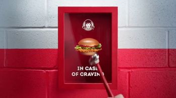Wendy's Spicy Chicken Sandwich TV Spot, 'Cravings Are Calling'