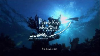 The Florida Keys & Key West TV Spot, 'Diving: National Marine Sanctuary' - Thumbnail 10