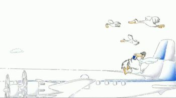 Red Bull TV Spot, 'Flying South' - Thumbnail 6