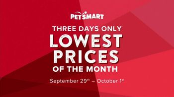 PetSmart Lowest Prices of the Month TV Spot, 'Cat and Dog Food' - Thumbnail 3