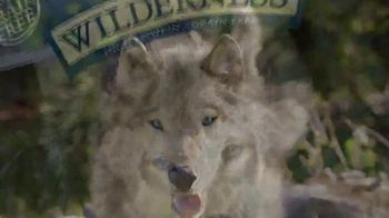 Blue Buffalo BLUE Wilderness TV Spot, 'Puppy Spirit' - Thumbnail 5